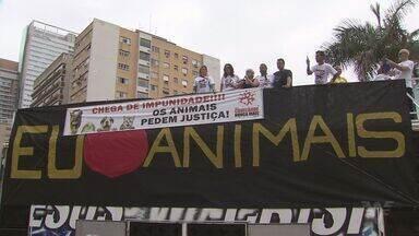 Manifestação contra os maus tratos em animais acontece em Santos - Intenção foi mobilizar a comunidade e alertar contra a PEC que tenta legalizar vaquejadas e rodeios.
