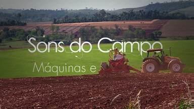 Na série 'Sons do Campo', conheça a música que o agricultor mais gosta - O barulho das máquinas e o rangido das ferramentas são os protagonistas dessa história