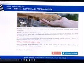 Casos de maus tratos contra animais podem ser denunciados pela internet - Denúncia pode ser feita de forma anônima.