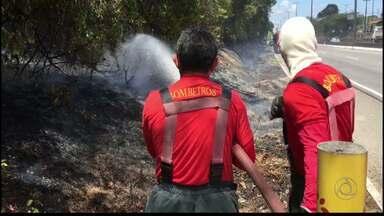 JPB2JP: Incêndios em duas casas e na Mata do Buraquinho - Ninguém ficou ferido.