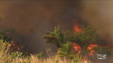 Maranhão está em terceiro lugar no ranking nacional de incidência de queimadas - Maranhão está em terceiro lugar no ranking nacional de incidência de queimadas