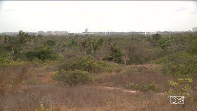 Biólogos e engenheiros elaboram plano de manejo do Parque em São Luís - Biólogos, engenheiros florestais e ambientais estão trabalhando na elaboração de um plano de manejo do Parque Estadual do Sítio do Rangedor.