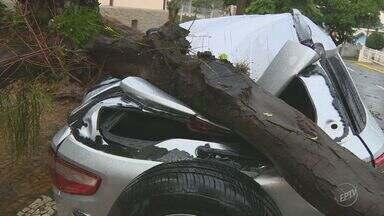 Chuva com granizo e vento forte causa destruição e deixa moradores sem energia em Campinas - Neste domingo de Natal (25), o vento passou de 90 quilômetros por hora.