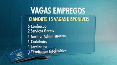 Região Noroeste tem 81 vagas de emprego - Em Cianorte tem 15 vagas abertas pela Agência do Trabalhador; veja também oportunidades para Umuarama e Paranavaí