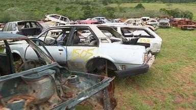 Ação interdita desmanche e recolhe 20 carcaças de carros em Alvorada - Operação Desmanche tem como objetivo fechar depósitos irregulares.