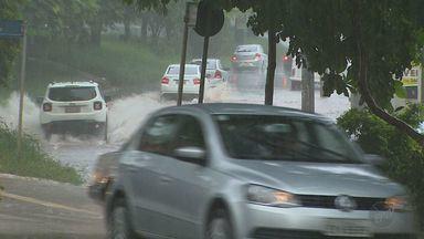 Chuva registrada na primeira quinzena de janeiro supera o esperado em Ribeirão Preto - Valor registrado em 18 dias já soma 75% do que era esperado para todo o mês.