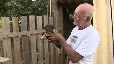 Reinaldo Soares recolhe animais abandonados; conheça! - Aposentado cuida e trata dos bichos até que encontrem novo lar