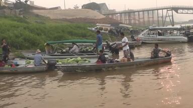 Cheia do Rio Amazonas ameaça produtores de área de várzea em Itacoatiara - Produtores temem perder todo o trabalho