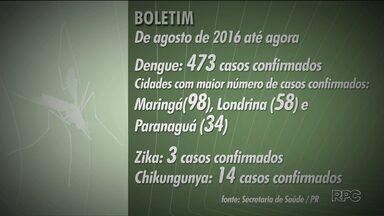 Mais de 470 casos de dengue foram confirmados desde agosto no Paraná - A Secretaria de Saúde vai fazer a segunda etapa da vacinação contra a doença em março.