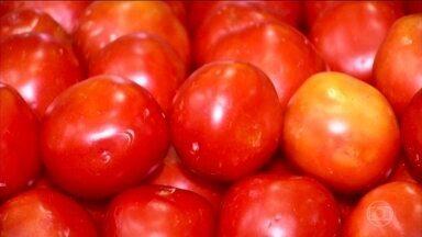 Tomate é rico em substâncias que combatem o câncer e radicais livres - O tipo débora é indicado para saladas. O italiano é específico para molhos, já que tem baixa acidez e poucas sementes. O sweet grape e o cereja são a dica para canapés.