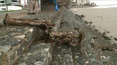 Força da maré destrói barreira de contenção em praia em São Luís - Árvores já morreram e quiosques estão ameaçados pela erosão na Praia da Ponta d´Areia, na capital.