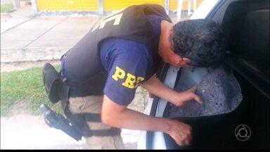 JPB2JP: Polícia encontra dinheiro que havia sido roubado de bancos em carro - Um casal foi preso.