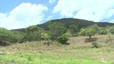 Projeto de recuperação de nascentes melhora qualidade da água distribuída em Quebrangulo - O projeto também tem o objetivo de despertar a consciência ambiental na população.