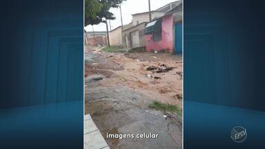 Chuva forte volta a atingir região de Campinas e causa transtornos - Apesar disso, a Defesa Civil não registrou nenhuma ocorrência em Campinas ou na região. Telespectadores registraram os estragos.