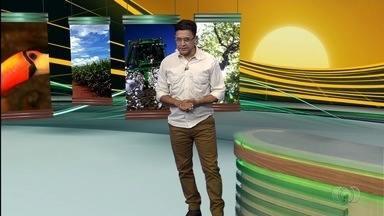 Confira os destaques do Jornal do Campo deste domingo (12) - Entre os principais assuntos está a mudança no cadastro de cavalos pela Agrodefesa.