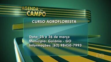 Confira a 'Agenda do Campo' para esta semana em Goiás - Entre os principais eventos está um curso de agrofloresta, para a produção de horta orgânica, em Goiânia.