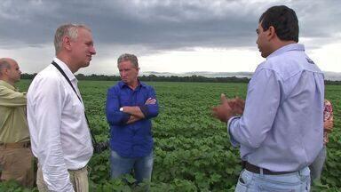 Embaixador holandês visita fazendas em Mato Grosso - O reconhecimento pela prática de uma produção sustentável tem motivado agricultores, que buscam adequar as fazendas aos padrões exigidos por compradores internacionais.