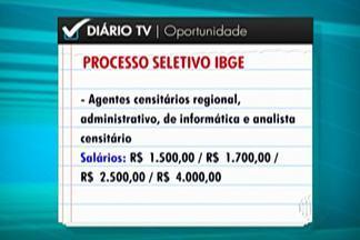 IBGE abre mais de mil vagas para Censo Agropecuário - São 1,038 vagas para agentes censitários regional, administrativo, de informática e analista. Inscrições são feitas pela internet até 9 de maio.