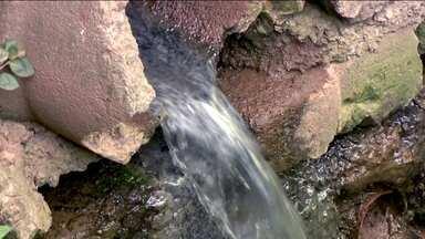 Programa Córrego Limpo ajuda a recuperar as águas dos rios de SP - A nova etapa do Programa Rio Limpo da Sabesp e da prefeitura da capital quer recuperar as águas dos rios de São Paulo.