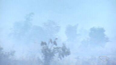 VC no ESTV: moradores da Serra, na Grande Vitória, reclamam de cheiro de queimado - Eles acreditam que cheiro venha de um incêndio em área de turfa.