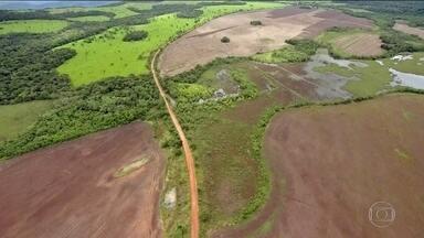 Mata Atlântica volta a crescer, mas desmatamento avança no Brasil - País perdeu 190 mil km2 de florestas em 16 anos. Os dados são do maior mapeamento das áreas de mata e florestas já feito no Brasil.