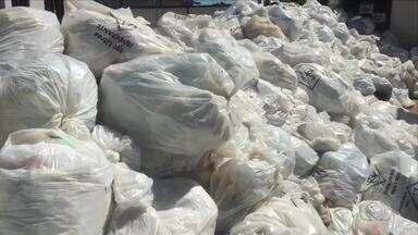 Lixo volta a se acumular no Hospital Maternidade Dona Regina - Lixo volta a se acumular no Hospital Maternidade Dona Regina