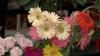 Mercado das flores oferece opções de presentes para o dia das mães - Na dúvida do que comprar, flores sempre agrada a mamãe.