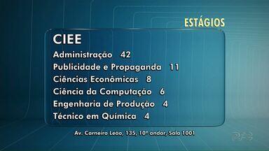 Confira as vagas de estágio em Maringá - O maior número de vagas é para o curso de Administração