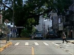 Retirada de canteiro provoca mudanças no trânsito em Passo Fundo, RS - Motoristas devem ficar atentos para mudanças entre a Rua Morom e General Netto