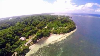 Bombardeios da 2ª Guerra não acabaram com a beleza de ilhas - Ilha de Peleliu, na Micronésia, tem minas deixadas desde o tempo da guerra. Árvores cobrem de verde o passado sangrento das ilhas.