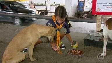 Menina de 7 anos alimenta animais de rua no caminho para a escola - Giovanna é apaixonada por cachorros e decidiu fazer alguma coisa para ajudar os animais abandonados na cidade do interior de Pernambuco
