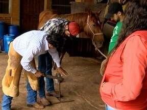 Curso ensina técnicas de casqueamento de cavalos em Presidente Prudente - Conteúdo ajuda na preservação da saúde dos animais.
