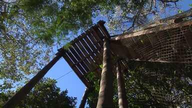Equipamentos da tirolesa e do arvorismo serão retirados do Parque do Ingá - O parque foi reaberto em 2011 com os equipamentos que nunca foram utilizados pela população.