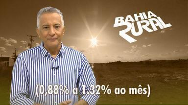Banco do Nordeste reduz taxa de juros no financiamento voltado para a compra de insumos - Bancos públicos estão oferecendo vantagens para quem quer investir na agropecuária.