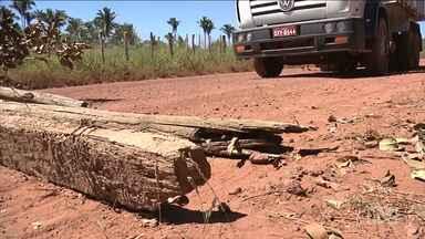 Moradores reclamam da falta de infraestrutura em estrada de Codó - Em Codó, moradores de um bairro reclamam da poeira levantada por caçambas e moradores já apresentam problemas de saúde.