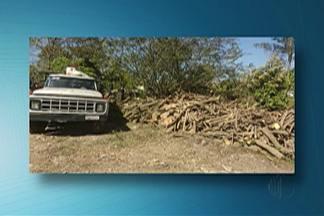 Caminhão da Prefeitura é apreendido após fazer descarte irregular em Itaquaquecetuba - Veículo fez descarte de resto de árvores em área de proteção ambiental na quinta-feira (7).
