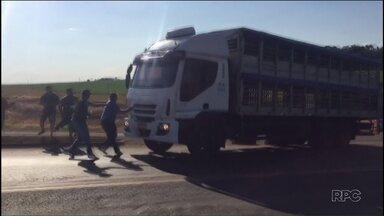 Caminhoneiro fura bloqueio e avança contra manifestantes - Manifestantes faziam um protesto em uma rodovia perto de Realeza.