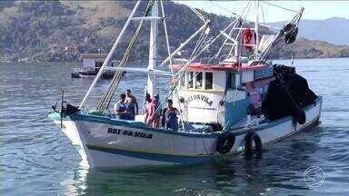 Pescadores comemoram fim do defeso da sardinha em Angra, RJ - Qauntidade de peixes neste primeiro dia animou quem ganha a vida no mar.