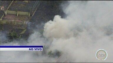 Incêndio atinge área de mata em São José - Chamas foram flagradas pelo VanCop.