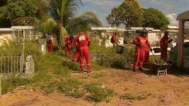 Cemitérios de Macapá são limpos para receber visitas para o Dia dos Pais - Prefeitura estima 20 mil visitantes nos cemitérios da capital. Trabalho de manutenção nos três cemitérios deve ser concluído até a data em 13 de agosto.