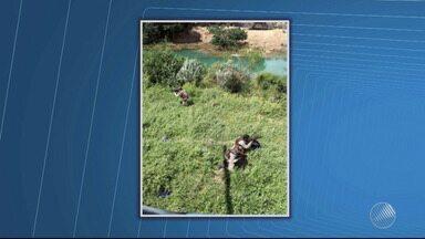 Cerca de 200 mil pés: polícia descobre grande plantação de maconha no norte do estado - A estimativa é que a área tenha plantada tenha o equivalente a trinta toneladas da droga.