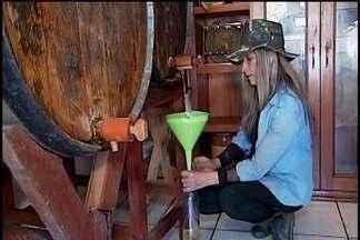 Produção de cachaça orgânica em Pratinha faz sucesso na região - Renilda Bessa, produtora da bebida, diz que o produto é ecologicamente correto e artesanal.
