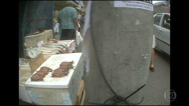 Flagrante de desordem pública nas ruas de Madureira - As calçadas da avenida Edgard Romero e da estrada do Portela estão cheias de camelôs. Os ambulantes vendem de tudo, de peixe a produtos eletrônicos. A quantidade de ambulantes atrapalha o caminho dos pedestres.