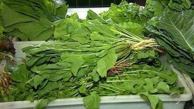 Cresce a procura por produtos orgânicos - Cresce a procura por produtos orgânicos.
