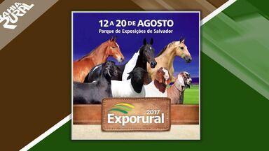 Exporural é realizada em Salvador até 20 de agosto - Feira é realizada no Parque de Exposições da capital.