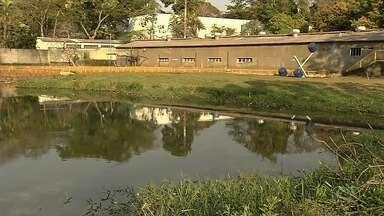 Umidade do ar em Goiânia chega a 12% - Reservatórios de água que abastecem o estado chegam a níveis baixos.