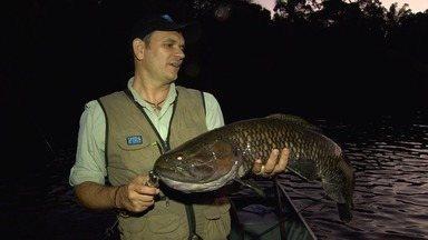 No sul do Pará, o desafio de fisgar trairões no rio Azul (Bloco 03) - Com vara de bambu, pescadores se lançam à pesca de traíras e pacus, no Pará.