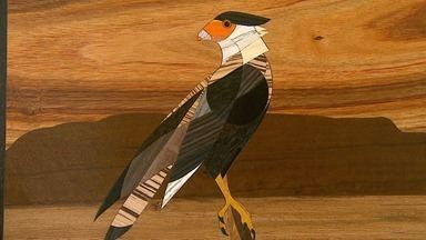 Natureza retratada na madeira - Arte da marchetaria inspira bióloga a retratar os animais.