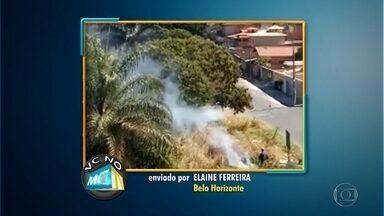 Lote vago causa transtornos na Região do Barreiro, em Belo Horizonte - Veja os vídeos enviados pelos telespectadores para o VC no MGTV.