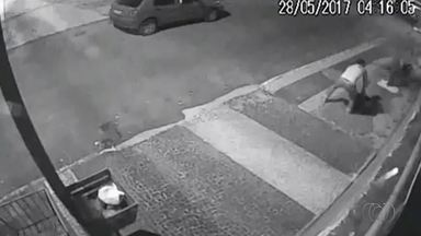 Câmeras flagram casal furtando plantas em Araguaína - Câmeras flagram casal furtando plantas em Araguaína